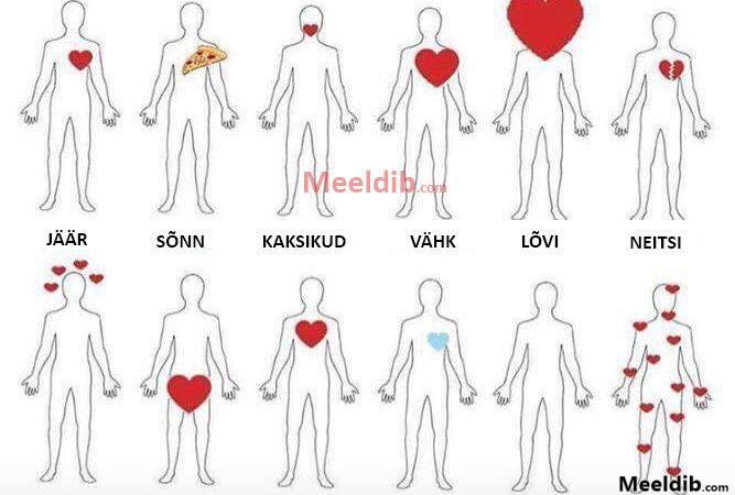 Kus on su süda?