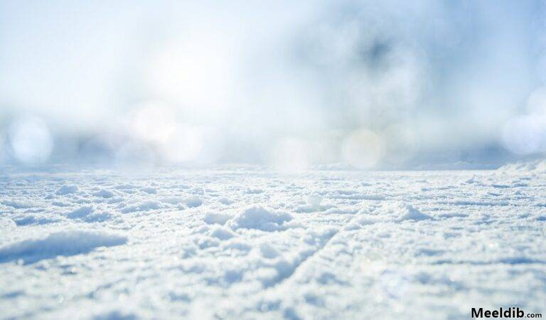 Lumi… ehk jutuke sellest, kuidas väliseestlane Floridast kolis Eestisse elama